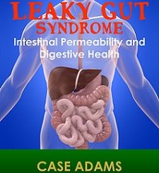 leaky gut syndrome and intestinal permeability