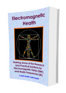 Electromagnetic Health by Case Adams