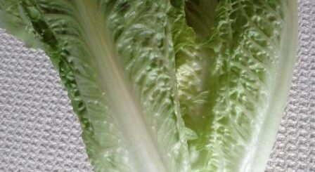leafy greens and immune system