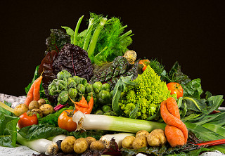 Dietary zinc and iron reduce cancer risk