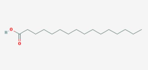 Palmitic acid linked to tumor growth