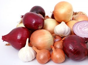 garlic and onions and breast cancer risk