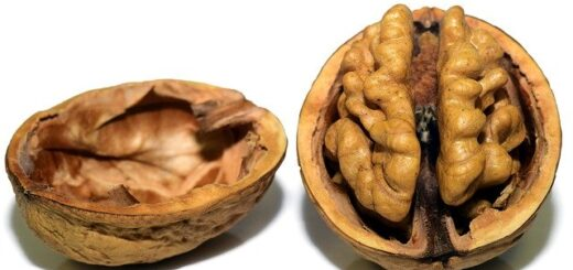 walnuts reduce blood pressure