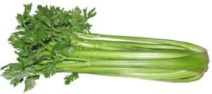 celery antifungal metabolic syndrome